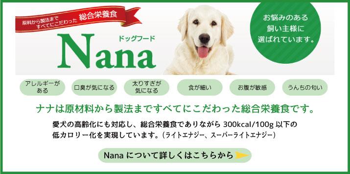 Nana詳細