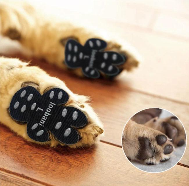 LOOBANI Dog Paw Pad Grips 犬用肉球パッド Black 12set(48枚入)