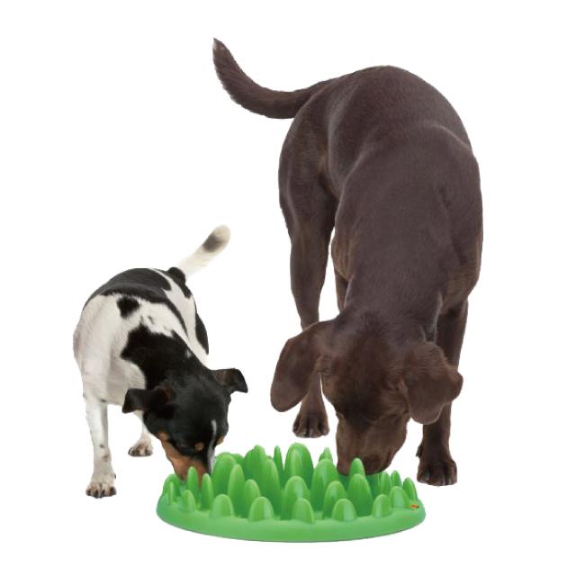 【早食い防止】Nortmate® Green - interactive bowl